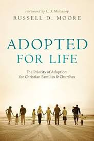 Christian book cover about the theology of orphan care